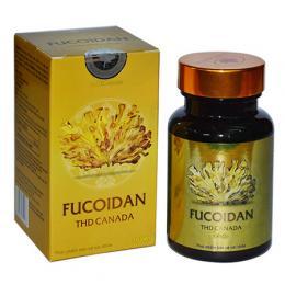 Tảo Fucoidan THD Canada